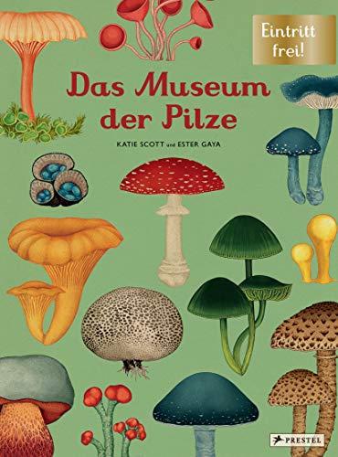 Das Museum der Pilze: Eintritt frei!