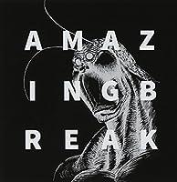 AMAZING BREAK by Terraspex (2014-07-29)