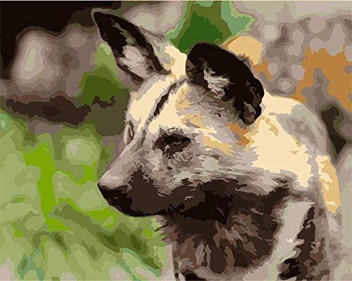 JiaHM Pintura de Bricolaje por números para Adultos Pinturas de Pintura de Animales feroces-Incluye Marco Interior 40x50cm
