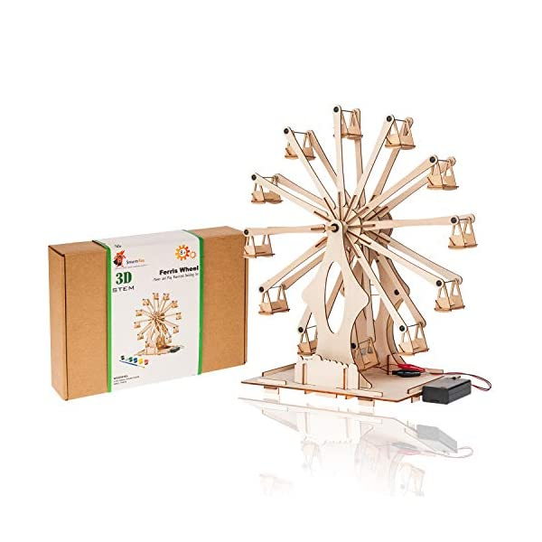 Wooden Ferris Wheel Building DIY Model Kits for Adults, Teens and Kids | Educational...