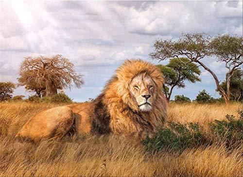 Kit de pintura por números, Amiiba XXXXX 40,6 x 50,8 cm pintura acrílica por número Wall Art Crafts (león sin marco)