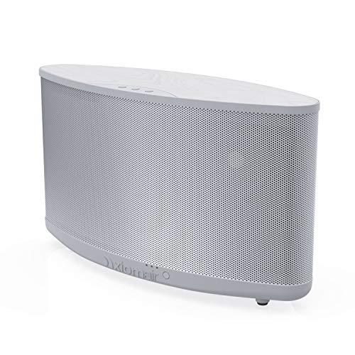16 Best Premium Bluetooth Speakers 2021 - Best Picks
