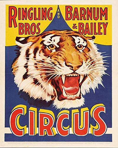 Cartel de metal con imagen de tigre de circo en tipo esmaltado, estilo vintage, retro, de metal, para decoración de pared de bar, pub, casa de granja de 8 x 12 pulgadas