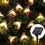 Luci Solari Giardino Ape - Catene Luminose 11M 60 LED, Luci LED Impermeabile IP65 per da Interno Esterno Luminose Giardino Terrazza Gazebo Matrimonio Natale Feste Camera Decorazioni (Bianco Caldo)