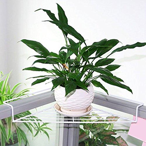 Étagère Lingyun Support de Fleur de Fer ➫ Décoration de Bureau ❀ Support de Bureau Triangulaire métallique multifonctionnelle ❁ Support à Fleurs ❀ Présentoir (Couleur : Blanc)