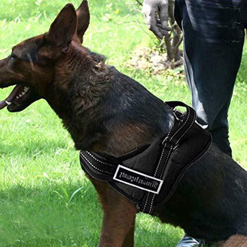 Atmungsaktives mittleres Hundegeschirrhalsband, großes, verschleißfestes Hundegeschirr aus Nylontuch, Welpe für Katzenhunde für Hundegeschirr(M)