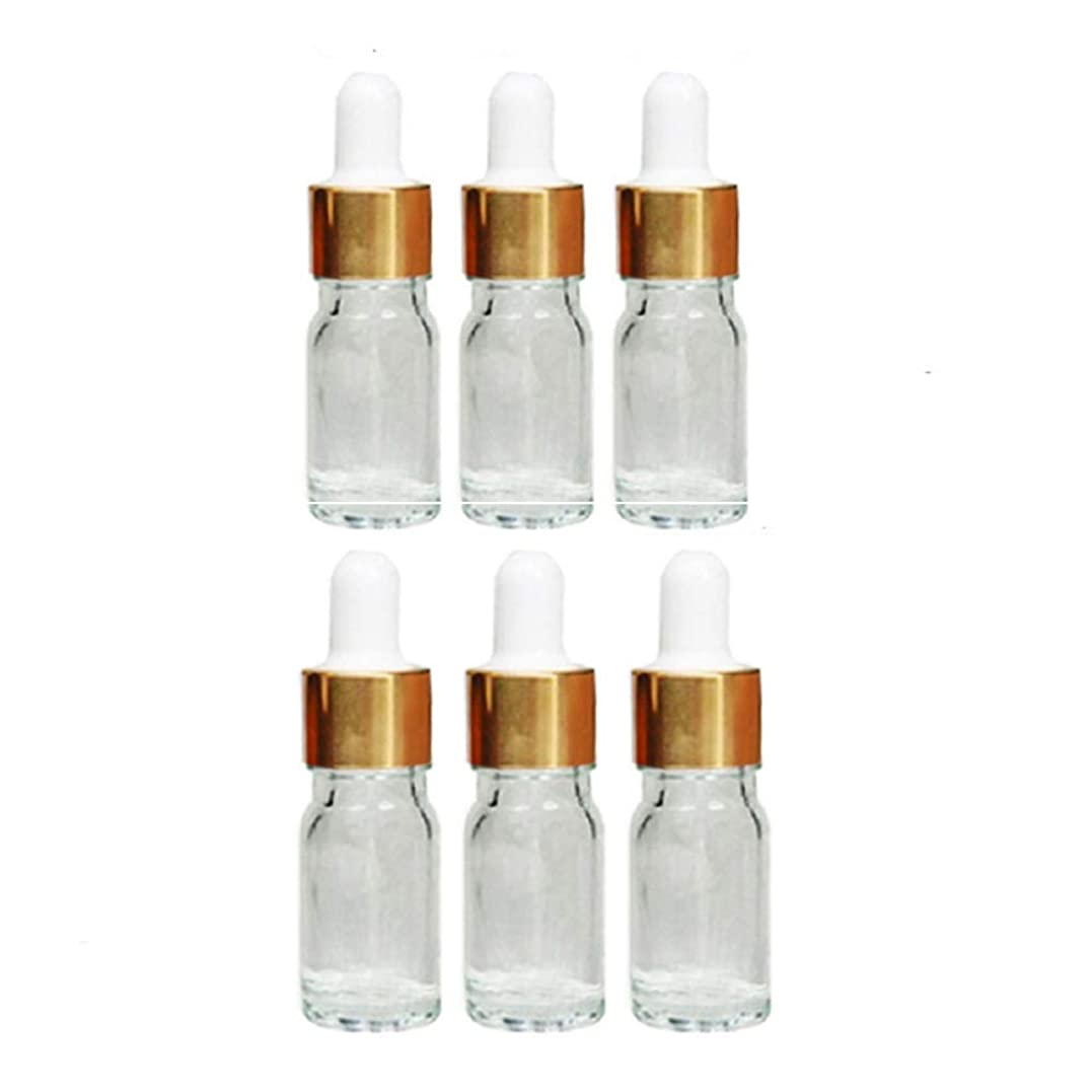 潜むホイール結果Vi.yo 化粧水小分けボトル 香水ボトル ガラス瓶 漏れ防止 旅行用品 6本セット 5ml
