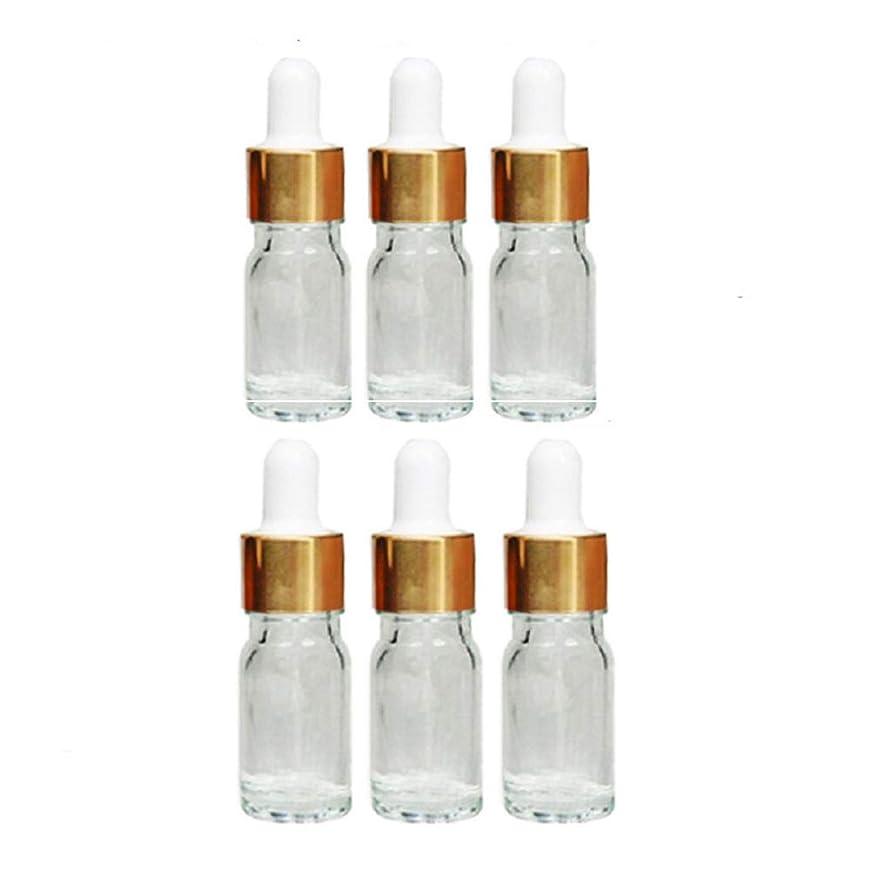彼女考案する自己尊重Vi.yo 化粧水小分けボトル 香水ボトル ガラス瓶 漏れ防止 旅行用品 6本セット 5ml