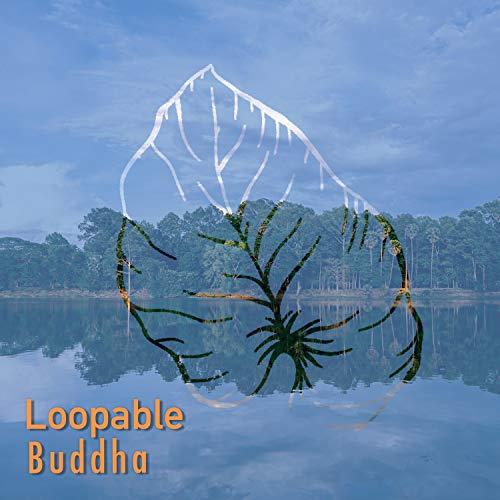 # Loopable Buddha