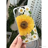 Crystal_phonecase Handmade Bling Pressed Dried Real Natural Fresh Flower Clear Case for Samsung Galaxy S4 S5 S6 S7 S8 S9 Note34589 (Big Yellow Flower #2, Samsung S7)