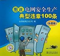 图说电网安全生产典型违章100条(彩图版)