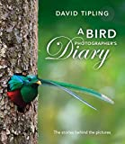A Bird Photographer's Diary: The stories behind the pictures