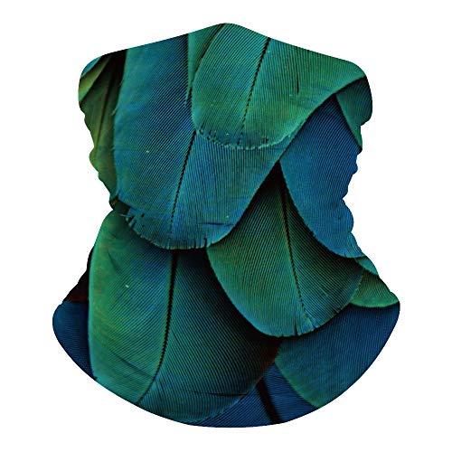 Écharpe unisexe pour le visage, cagoule bandana paon plumes animales sans couture 3D tour de cou turquoise pour moto, randonnée, ski