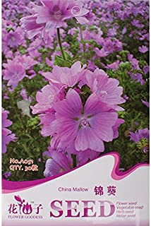 New Hollyhock Mallow Mystic Merlin Beautiful Hardy Perennial Species, 1 Original Pack, 30+ Seeds/Pack #A051