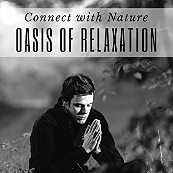 Oasis of Relaxation: Sounds of Nature, Buddhist Meditation, Connect with Nature