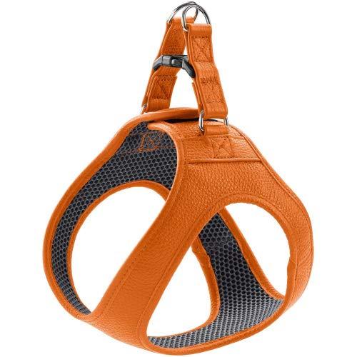 HUNTER Hilo Hundegeschirr mit Leder, für kleine Hunde Farbe orange, Größe XXS-XS