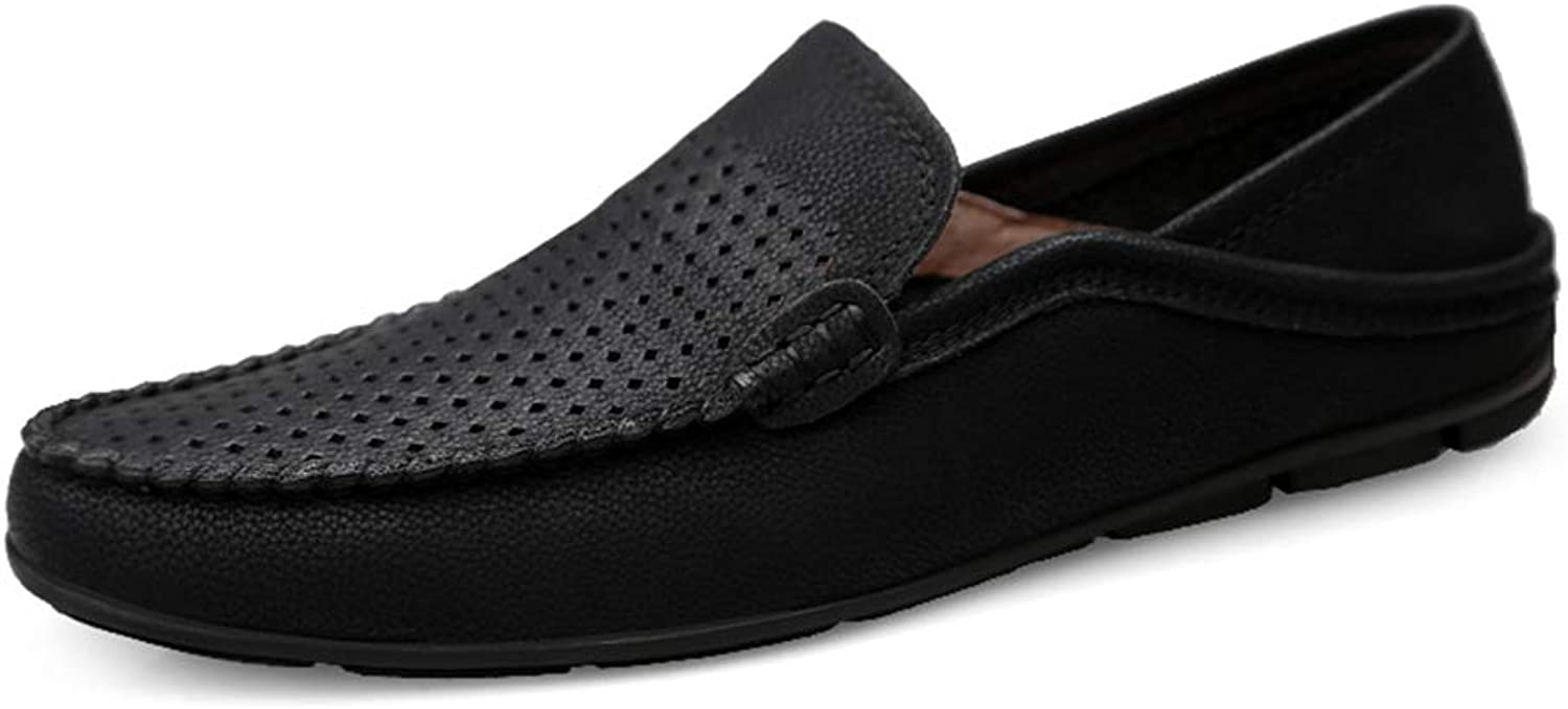 Men's Casual shoes, Comfortable Driving shoes Hole Lazy shoes Loafers & Slip-Ons for Work, Leisure,Going out,Gatherings