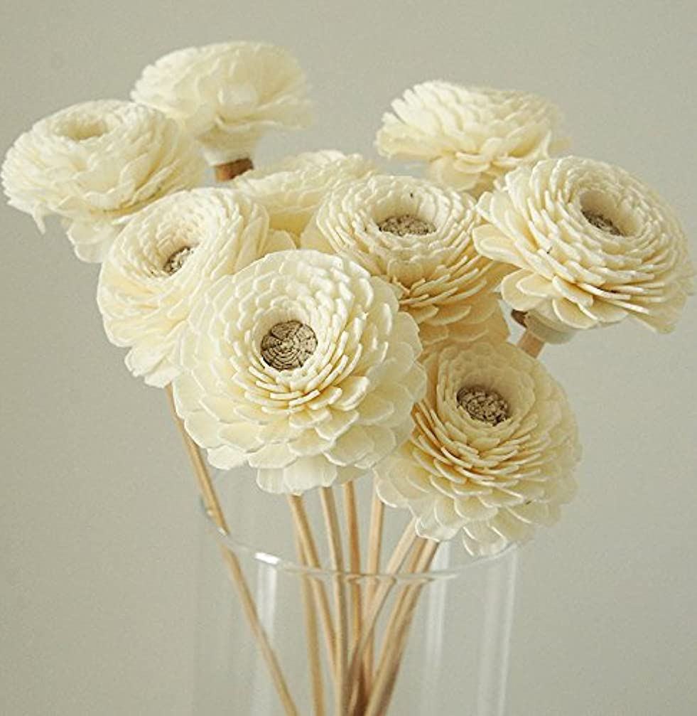 腹部ライター美徳エキゾチックエレガンス10のセットZinniaデザインSola Flower for Aroma Diffuser直径1?1?/ 2