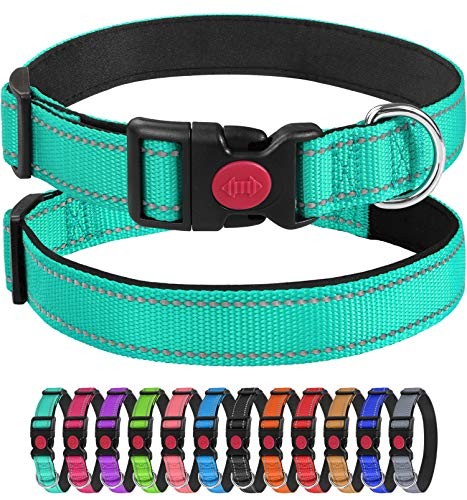 Joytale Collar Perro Reflectante,Nylon Collar Acolchado con Neopreno,para Caminar Correr Entrenamiento,Ajustable para Perros Grande,40-60cm,Turquesa