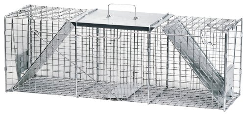 Havahart 1045 Live Animal Two-Door Raccoon, Stray Cat, Opossum, and Groundhog Cage Trap