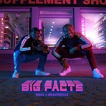 Big Facts (feat. Margiiella)