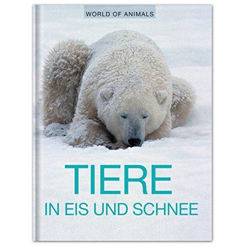 Tiere in Eis und Schnee