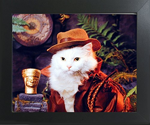 Impact Posters Gallery Indiana Jones Cat Funny Animal Nature Kids Room Wall Decor Contemporary Black Framed Art Print Picture
