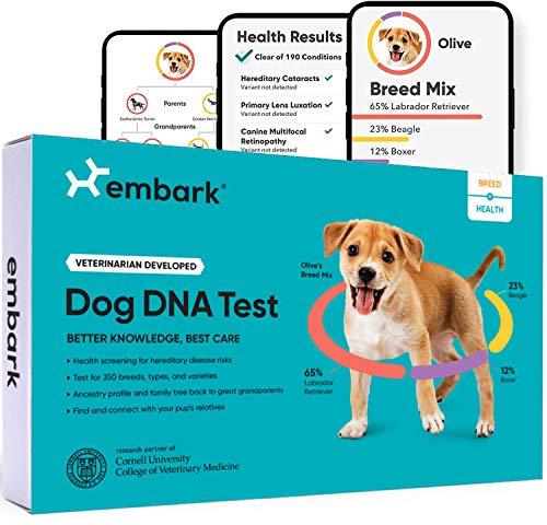 Embark Dog DNA Kit
