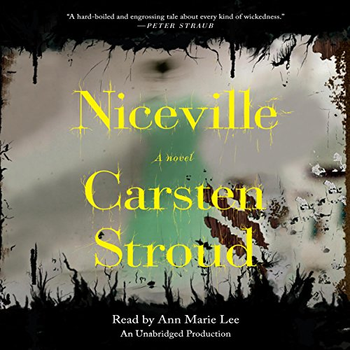 Niceville audiobook cover art