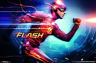 Trends International Wall Poster the Flash-Speed Force, 22.375