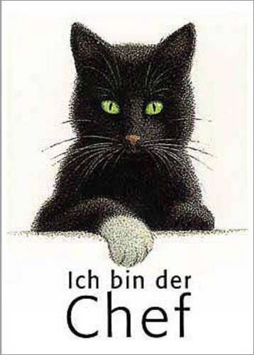 Poster Kater Nero als Chef von Quint Buchholz - preiswertes Plakat, XXL Wandposter