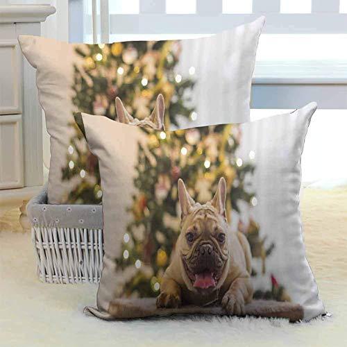 N\A Fundas Decorativas para Cojines Feliz año Nuevo Bulldog francés Año del Perro Navidad Cremallera Oculta Cómodo y Encantador para sofá Sofá Hogar Decoración al Aire Libre Decoración navideña 2PCS