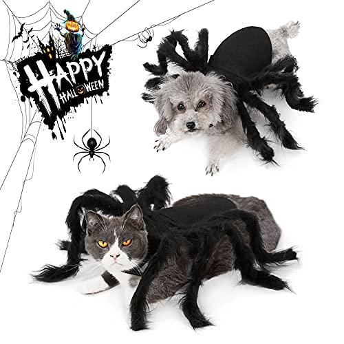 Disfraz De Halloween del Gatos Perros, Araña...