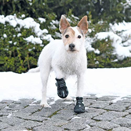 Trixie - Bottes De Protection Pour Chien - Walker Active - XS- S