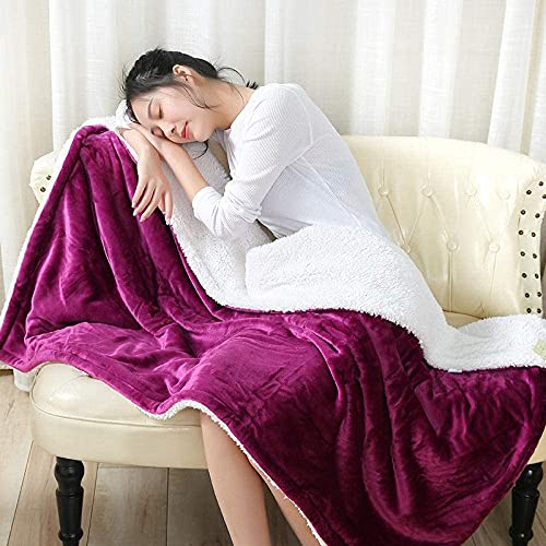 Warm Comfortable Soft Cute Blanket Blanket Double/Twin Size Fleece Bed Blankets Warm Fluffy Reversible Microfiber Solid Blankets for Bed and Couch (Color : -, Size : -)