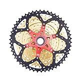 Rlorie Transmisión De Rueda Libre De Bicicleta Volante De Cassette De Bicicleta Compatible con Muchos Modelos De Bicicleta/Carretera/Bicicleta De Montaña/Bicicleta Plegable There