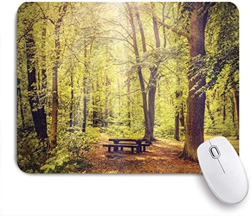 Benutzerdefiniertes Büro Mauspad,Picknicktisch im Wald Laubgrün Naturthema Sommer und Winter,Anti-slip Rubber Base Gaming Mouse Pad Mat
