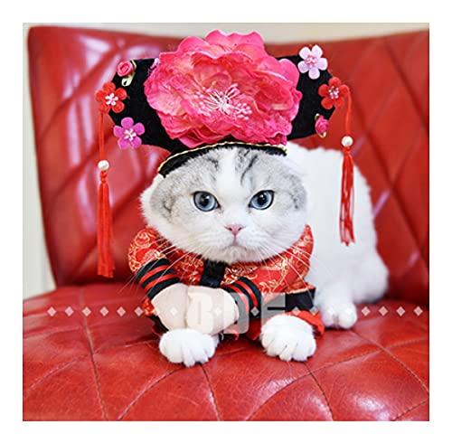 Xeke se Convierte en un Traje de Mascota erguido, un Disfraz de Halloween para Gatos y Perros, y un Traje de Gato o Perro para una Fiesta Divertida-G||S