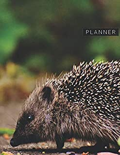 Planner: Hedgehog 2 Year Weekly Planning Organizer | 2020 - 2021 | Animal World Nocturnal Cover | January 20 - December 21 | Writing Notebook | ... | Plan Days, Set Goals & Get Stuff Done
