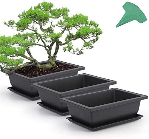 GROWNEER 3 Packs 9 Inches Bonsai Training Pots with 15 Pcs Plant Labels Plastic Bonsai Plants product image