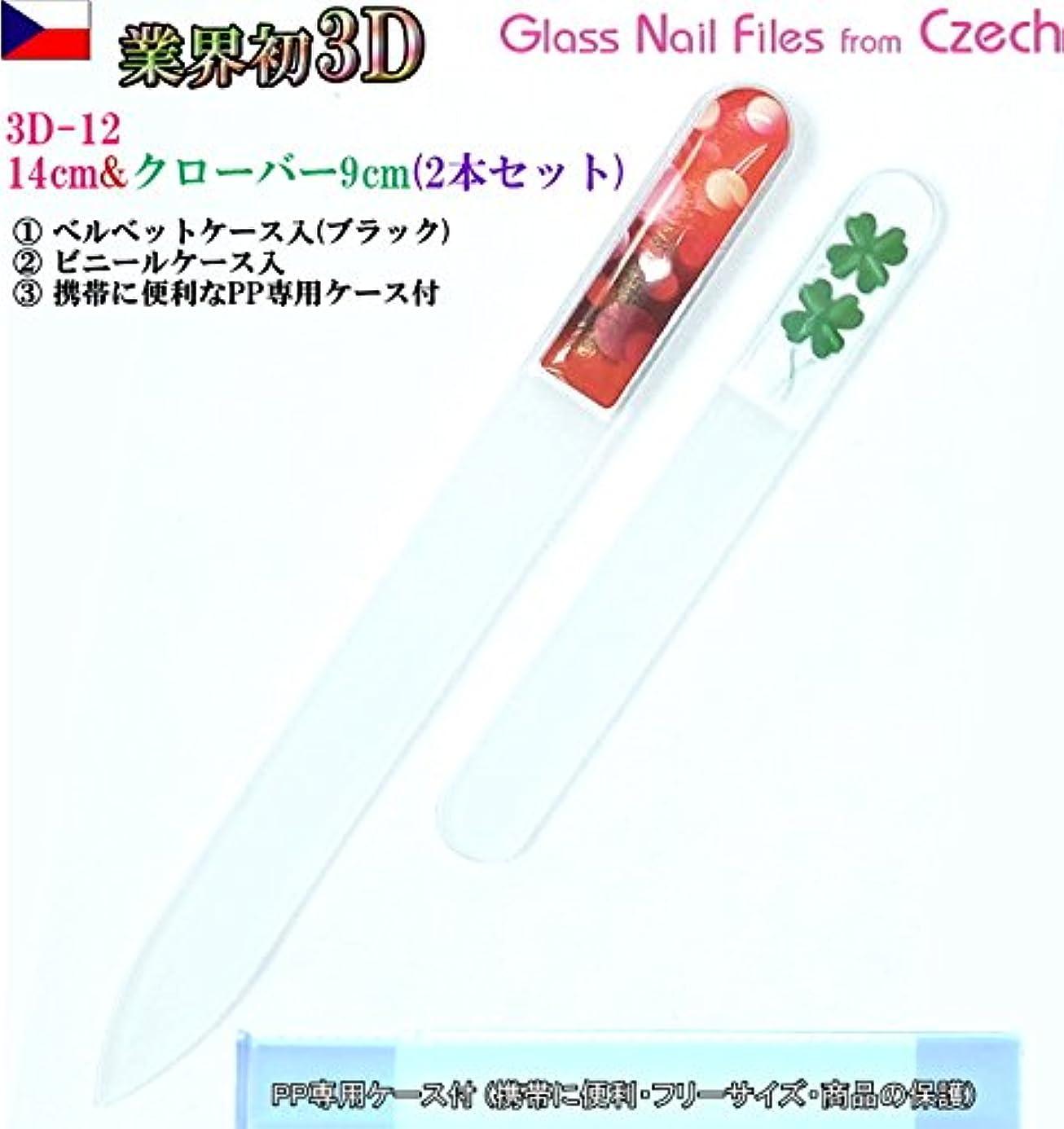 コーンオートメーション波BISON 3D チェコ製ガラス爪ヤスリ 2Pセット M12&Sクローバー各両面仕上げ ?専用ケース付