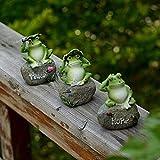 GJXY Estatuas de la Rana Ranas pequeñas y Hermosas Decoraciones Sienta en la Escultura de Piedra de la Piscina Exterior del Tanque del Acuario Ornamento del jardín decoración,3 Only
