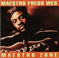 Maestro Zone