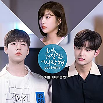 The Liar and His Lover (Original Tv Soundtrack) Part 8