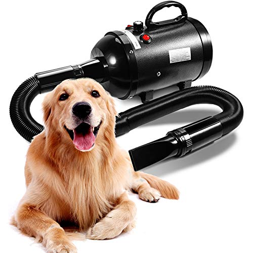 AIIYME Dog Dryer, 3200W/4.3HP Motor Stepless Adjustable Speed Dog Hair Dryer Pet Dog Grooming Dryer Blower with Adjustable Temperature (35°C-70°C), Professional High Velocity Air Forced Dryer for Dogs