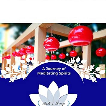 A Journey Of Meditating Spirits