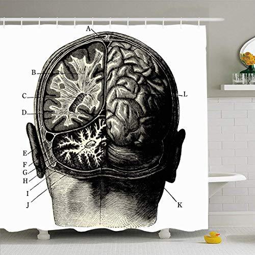 JoneAJ Hughman Concept Brain Pensamiento Retro Personalidad Pintura vanguardista Grabado Manuel Psyche Persona Microfibra baño Ducha Cortina Tela de poliéster 71x71 Pulgadas