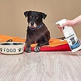 Geruchsneutralisierer für Hunde – natürlicher Entferner von Urin-Geruch - 7