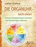 Die Organuhr – leicht erklärt: Unseren Energiekreislauf verstehen und Erkrankungen erkennen