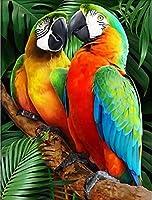 クリスタルラインストーンダイヤモンド刺繡絵画、動物の鳥の手工芸品アートキットフルドリル刺繡写真家の装飾-30x40cmフルドリル